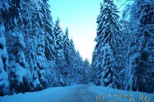 Lepsa Iarna